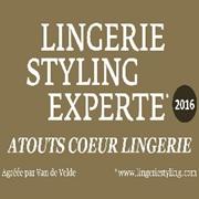 Vign_logo_lingerie_styling_2_
